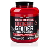 Body World Group Mega Muscle Weight Gainer